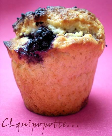 muffins mure (1)